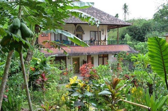 Rumah Jepun: the house in a garden