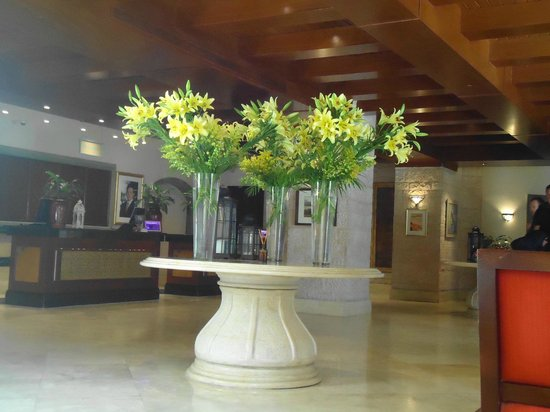 Movenpick Resort & Residences Aqaba: Receptionen