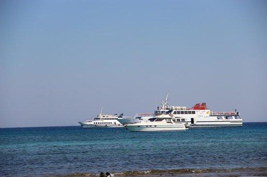 Chrissi Island : 2