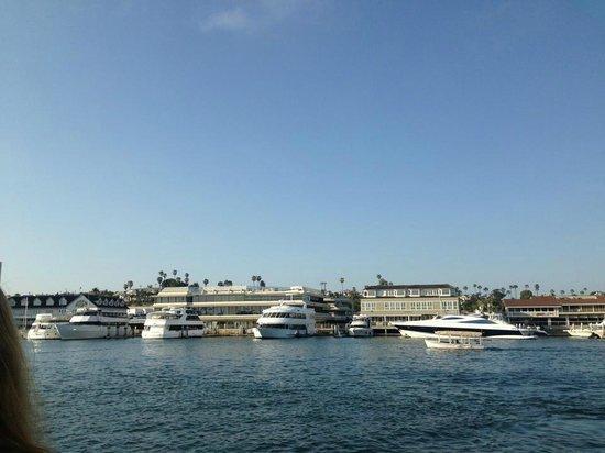 هوليداي إن إكسبريس نيوبورت بيتش: Newport Beach