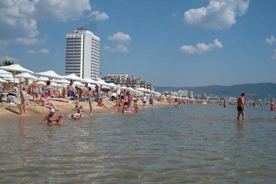 Hotel Aquamarine : plage