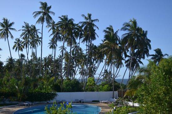Ngalawa Beach Village : une palmeraie au bord de l'eau