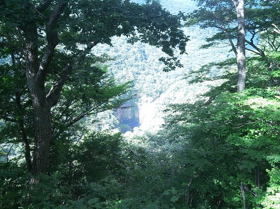 Takimidai Lookout: 不動滝