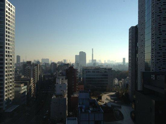 E Hotel Higashi Shinjuku: Room view