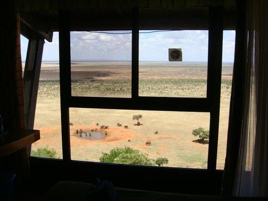 Voi Safari Lodge: Panorama dalla finestra della camera.
