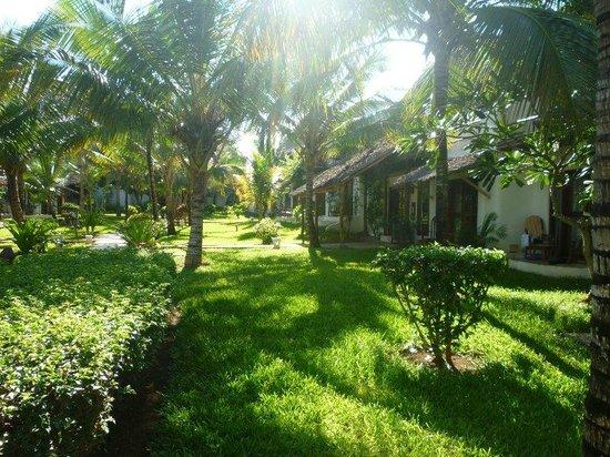 My Blue Hotel: giardino hotel