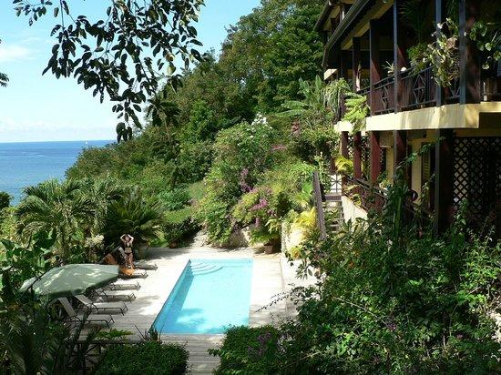 Villa Pomme d'Amour: le coin piscine