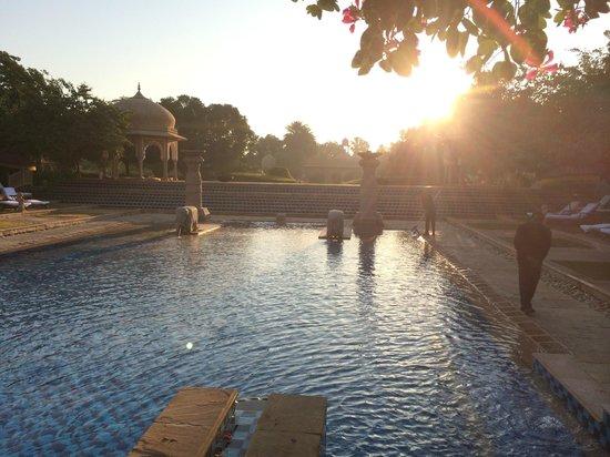 The Oberoi Rajvilas: pool