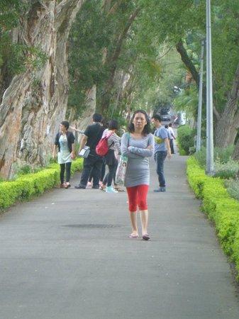 C.K.S. Shilin Residence Park: Garden Street