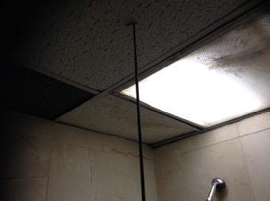 New York Inn : bathroom ceiling