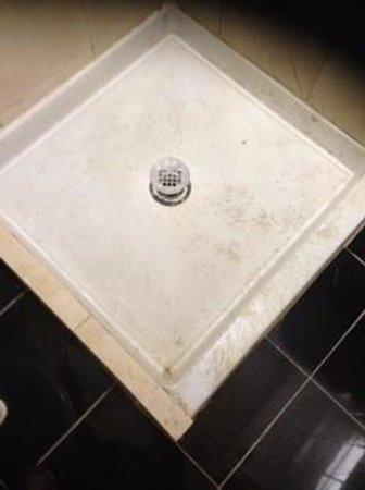New York Inn: shower