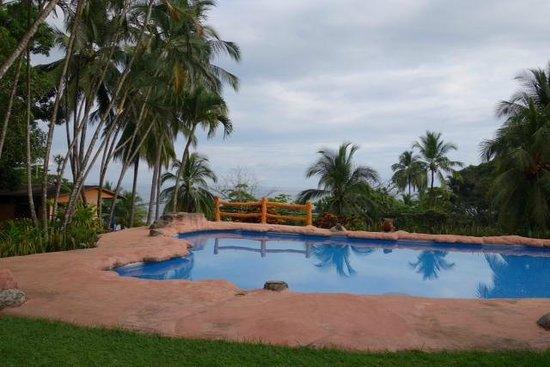 Hotel Los Mangos : pool