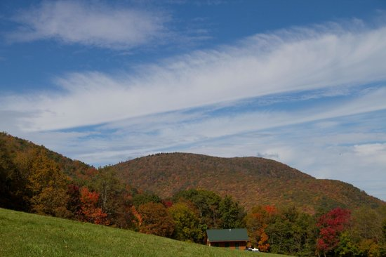 Blue Bear Mountain Camp: View from the open field across from our site (T6)