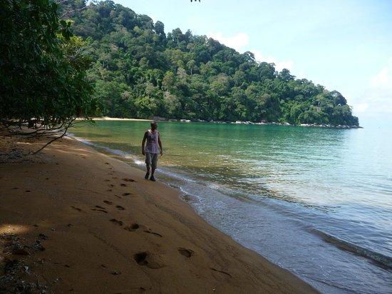 La Monkey Bay