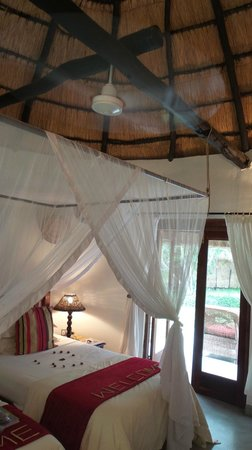 Waterberry Zambezi Lodge: room