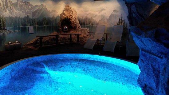 Hotel Adler Dolomiti Spa & Sport Resort : SPA - laghetto alpino