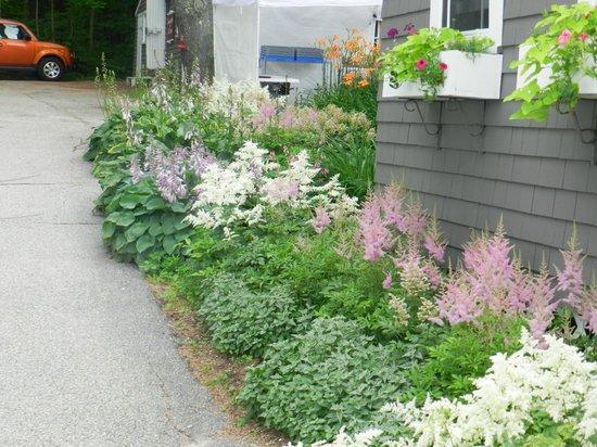 Snowvillage Inn : Gardens outside the Main Inn
