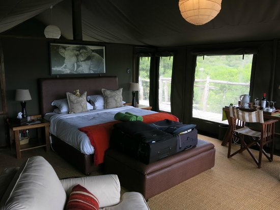 HillsNek Safaris, Amakhala Game Reserve : Luxury tent