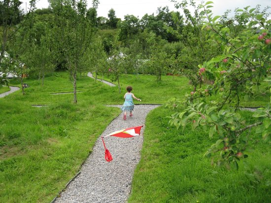 Ireland Glamping - Pink Apple Orchard : Running along the pathways