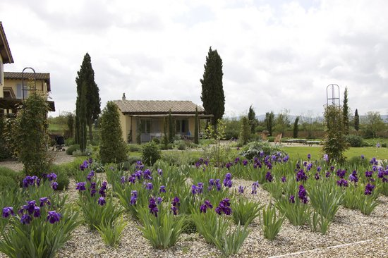 Agriturismo Siena Rinidia Bio: соседнее здание