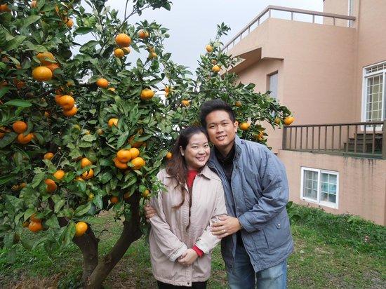 Tae Gong Gak: Tangerine Garden