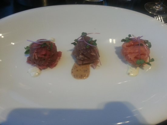 Van der Valk: Trio tartar...beef, tuna and salmon...perfect