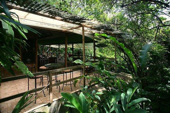 Casa Buena Vista B & B: Gardens and teak house terrace