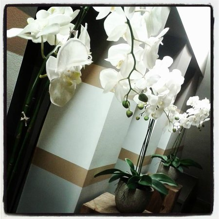 Floris Karos Hotel: New decorational flowers at the entrance of our breakfast room!