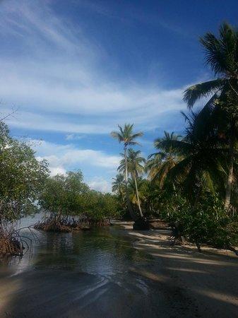 Grand Bahia Principe El Portillo: promenade plage de l'hôtel