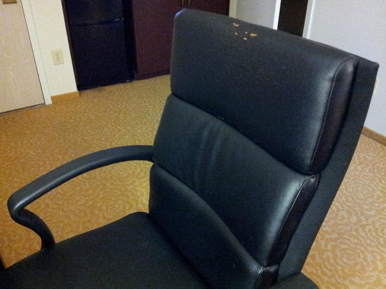 Chicago Marriott Suites Downers Grove: Desk chair