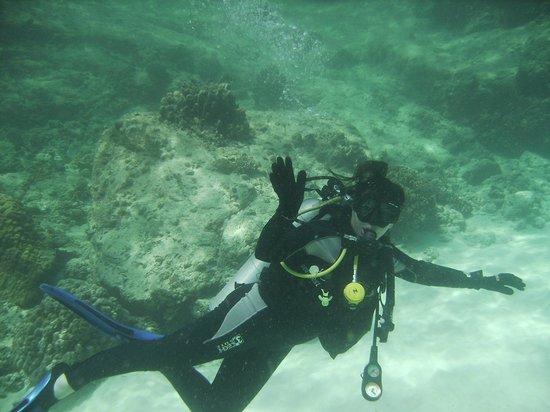 Infinity Ocean Diving - Private Diving : Venez c'est Génial