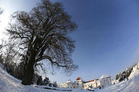 Old Castle (Stari Grad) : Castle1