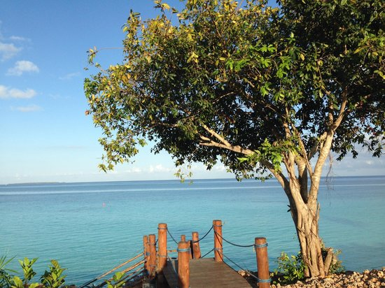 Hideaway of Nungwi Resort & Spa: vista dalla piscina