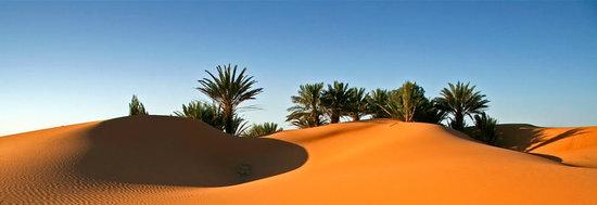 Happy Morocco - Day Trip: Happy Morocco Tours