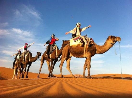 Happy Morocco - Day Trip: Morocco Camel Trekking day tour