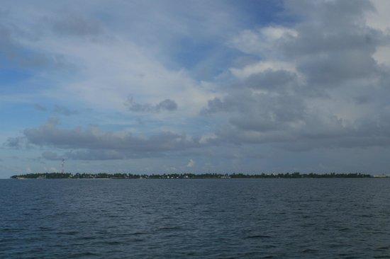 Arora Inn: Maafushi