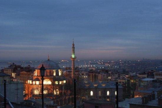 Laleli Gonen Hotel: Вид с крыши на ужине