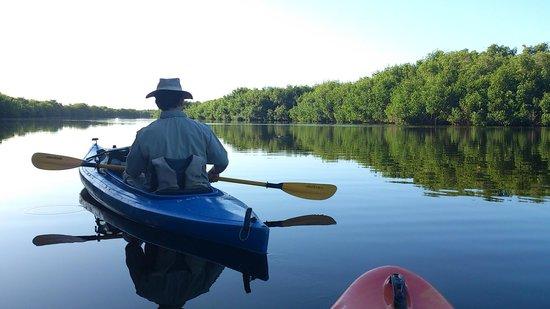 Tour the Glades - Private Wildlife Tours: el gran Tod y uno de los caimanes que vimos esa mañana