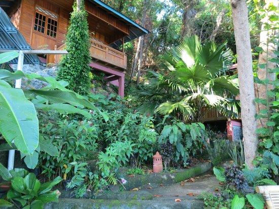 NAD-Lembeh Resort: バンガローへの道