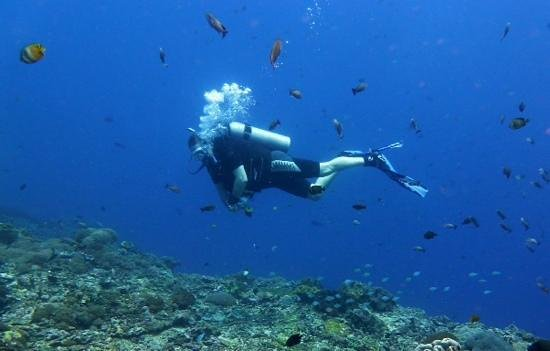 Grand Mirage Resort : Bali Diving