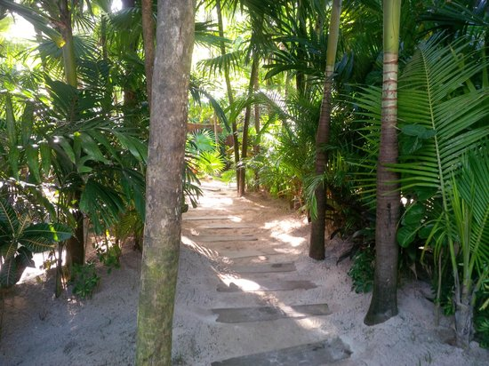 Be Tulum Hotel: PATH TO YOUR ROOM