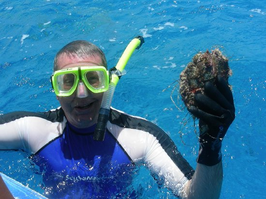 Tikehau Ninamu Resort : diving for pearls