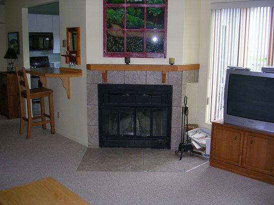 Village des Soleils : fireplace Deluxe apts