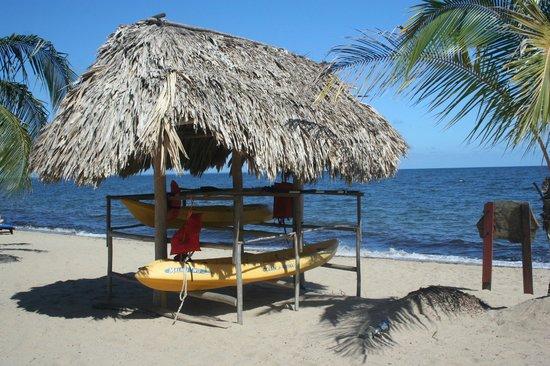 Belizean Dreams: The free kayaks
