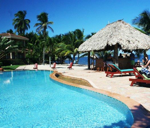 Belizean Dreams : The pool and bar