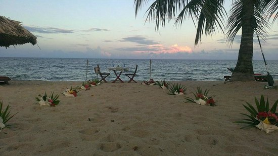 Belizean Dreams Resort: Conch/flower path for us to walk down to our beautifully set table