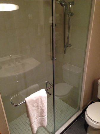 Sheraton Montreal Airport Hotel : The shower (no bath tub)