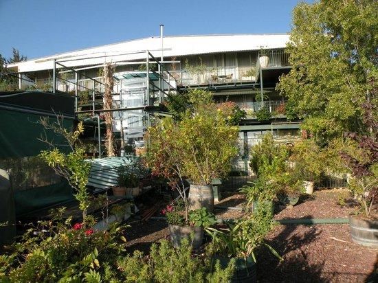 Hotel Mitzpe Hayamim: Вид на гостиницу с террасы для отдыха