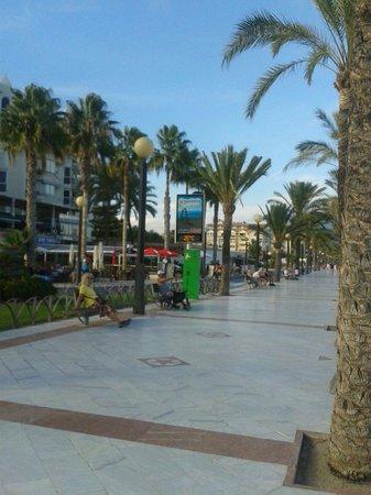 Albir Garden Resort : Albir front