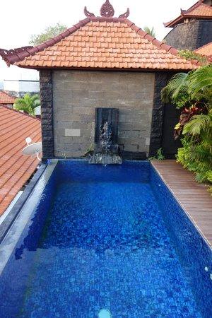 Jimbaran Cliffs Private Hotel & Spa: Pool - Big and private